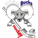 Logo der Whitebucks